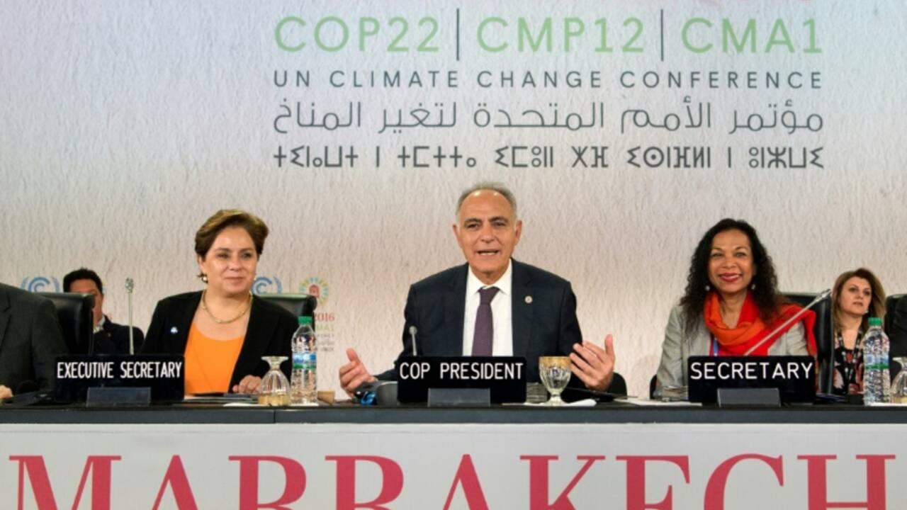 La COP22, déterminée à lutter contre le réchauffement