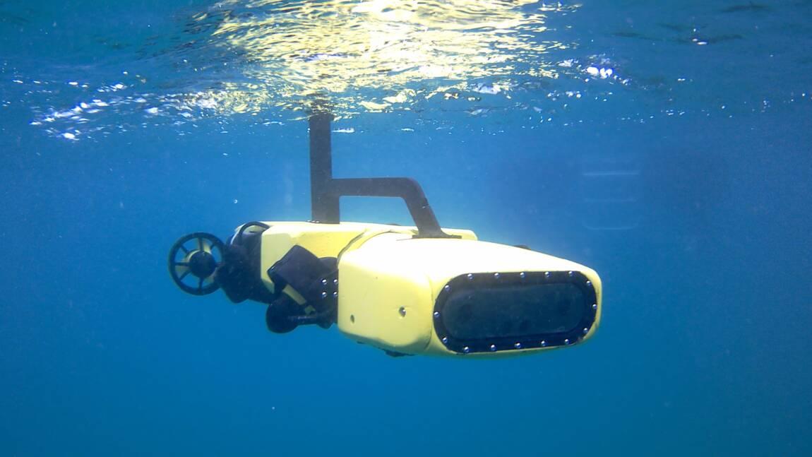 Grande barrière: un robot pour chasser les étoiles de mer tueuses