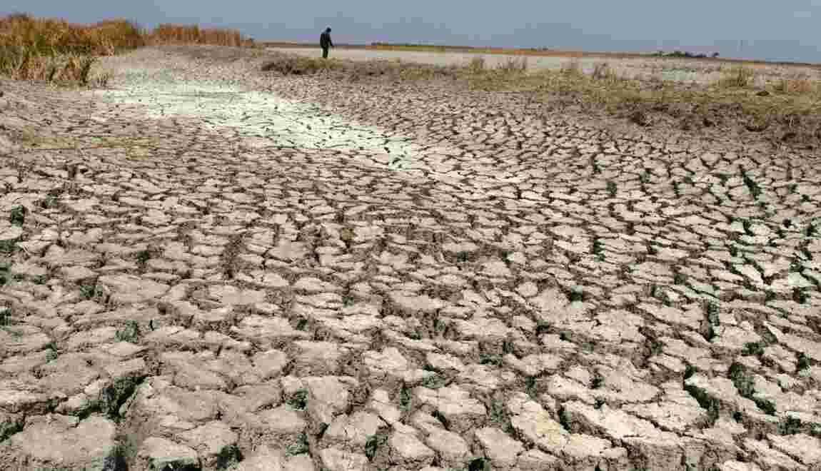 Températures, gaz à effet de serre et montée des eaux à des niveaux records en 2015