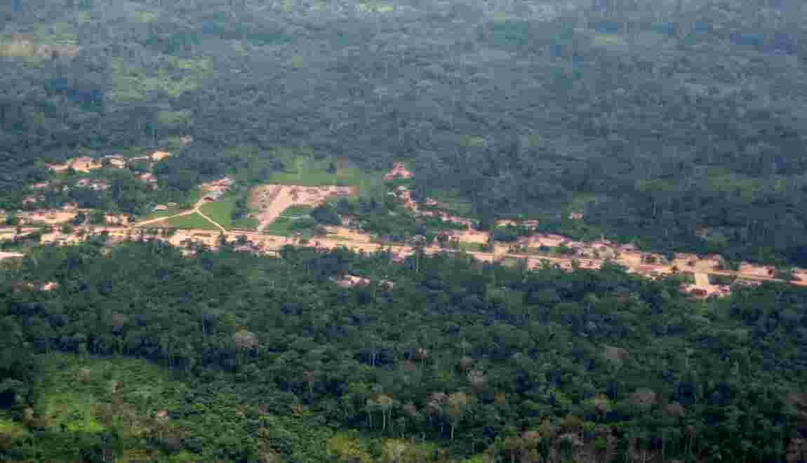 Un mécanisme pour sauver les forêts accusé de bafouer les droits autochtones