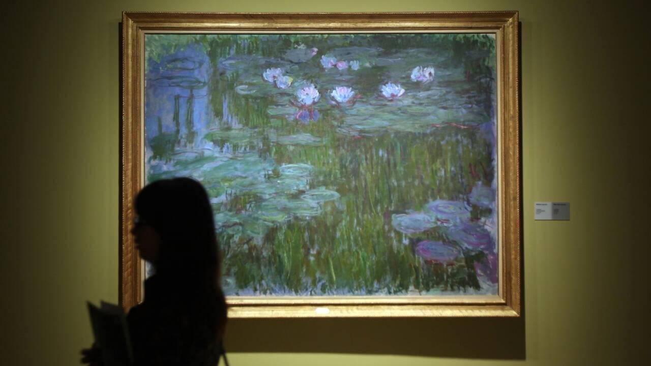 Les descendants des nymphéas qui inspirèrent Monet
