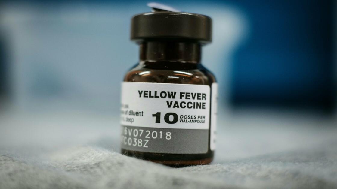 Comment la fièvre jaune s'est propagée au Brésil
