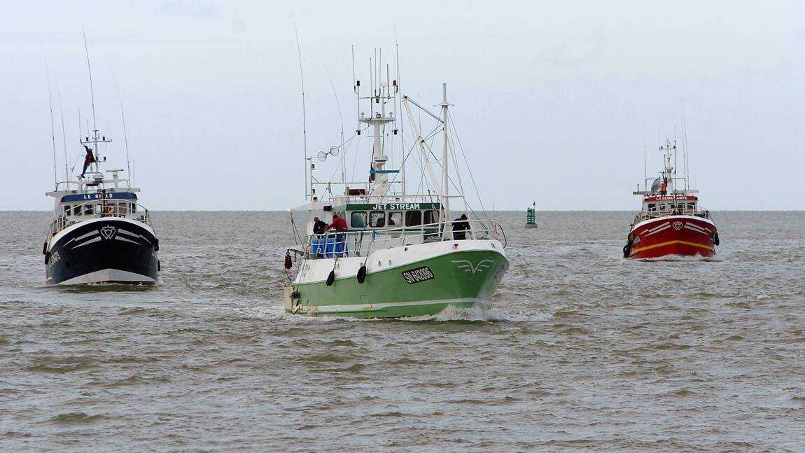 """Quotas de pêche 2017 : les pêcheurs plutôt """"satisfaits"""", les ONG critiques"""