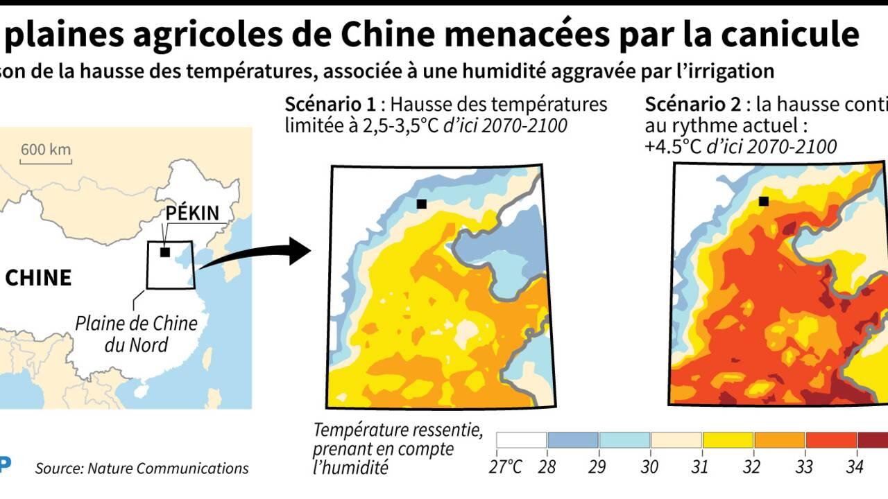 Des plaines agricoles de Chine menacées par des canicules mortelles