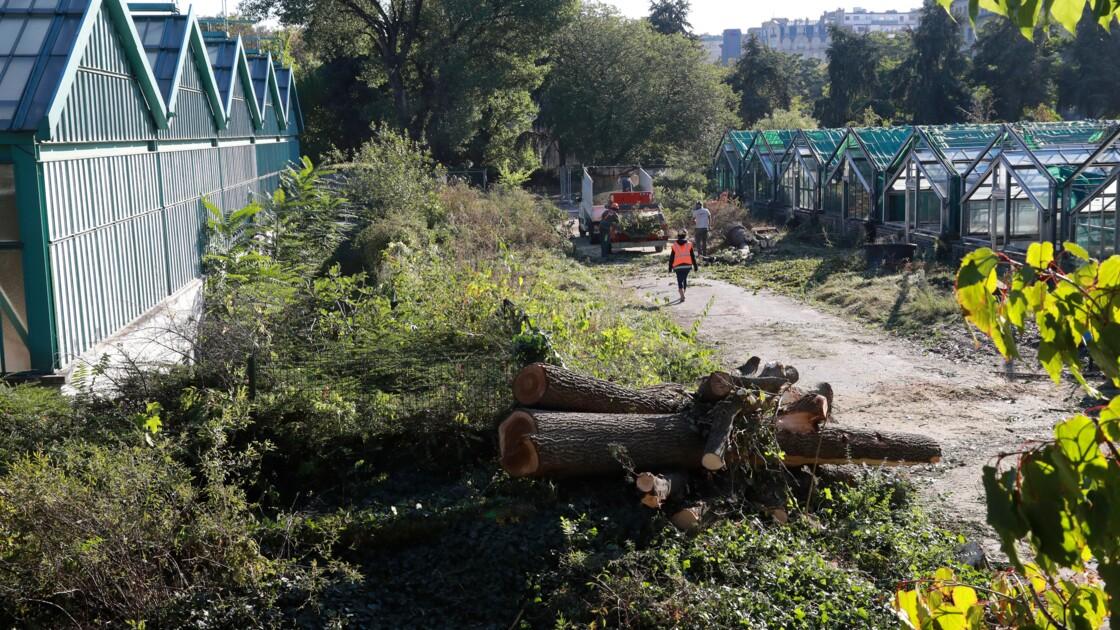 Extension Roland-Garros: le rapporteur devrait se prononcer contre l'extension vers les Serres d'Auteuil