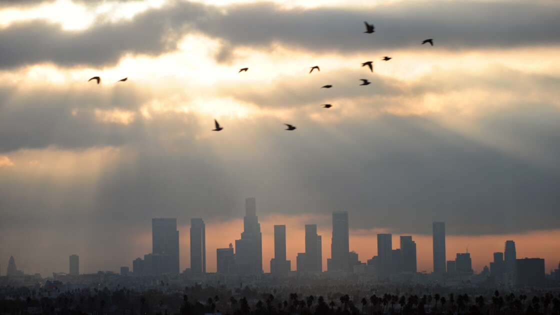 Le prix Right Livelihood à un avocat américain ennemi de la pollution chimique
