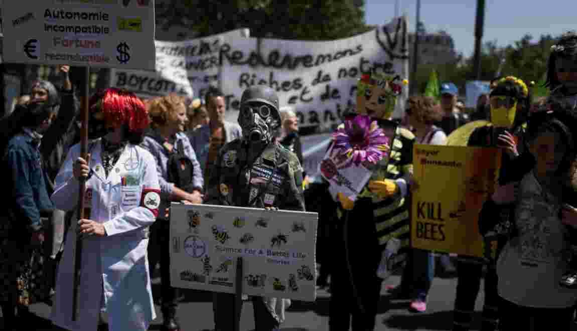 Plusieurs centaines de personnes défilent en France contre les OGM