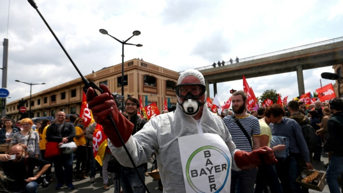 Pesticides: l'accès à l'information prime sur le secret industriel