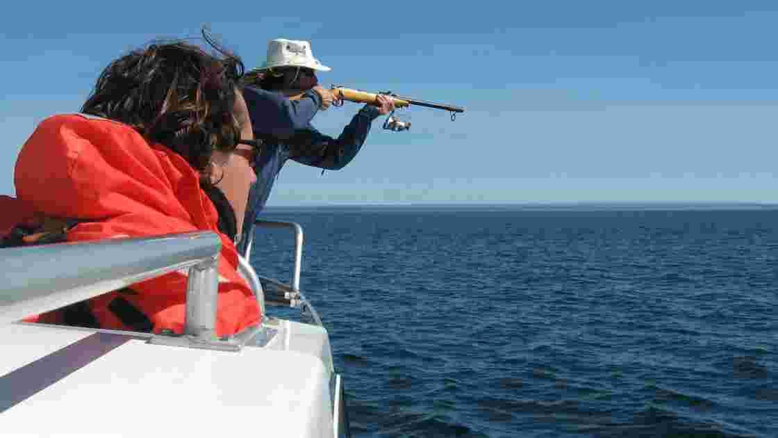 Canada: fin de la pêche au crabe pour protéger les baleines franches