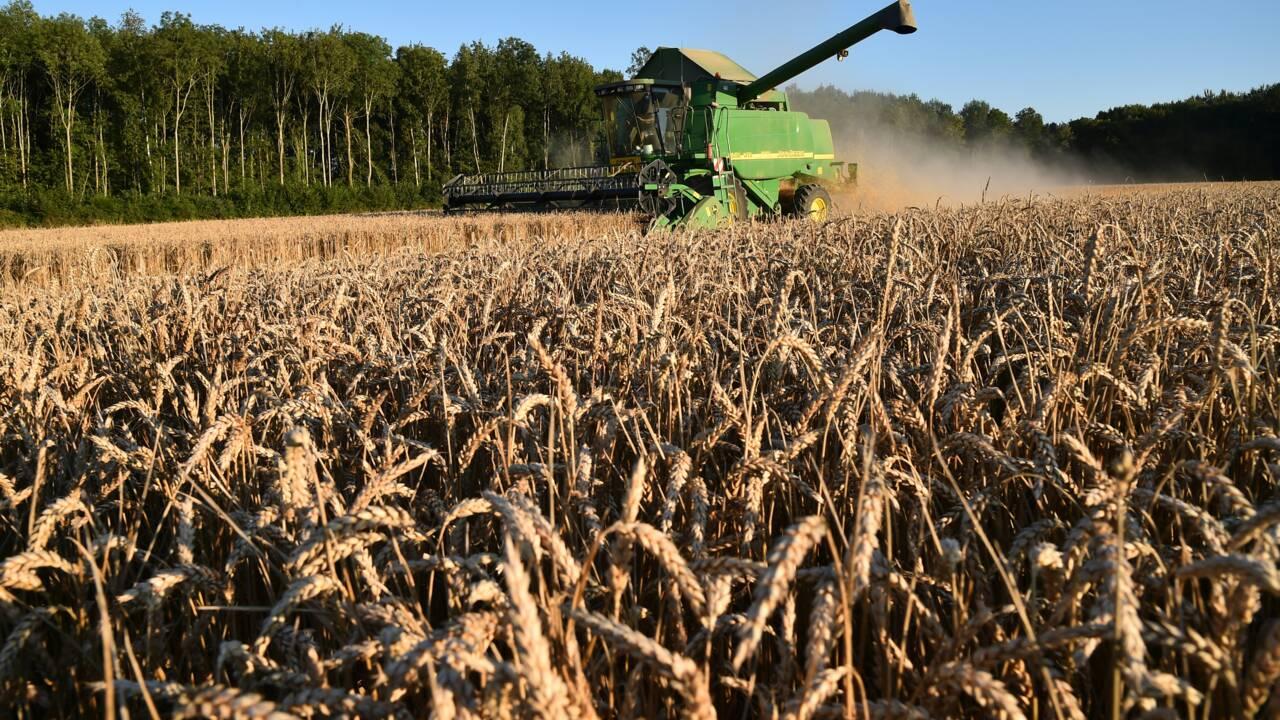 Après la mort de Beulin, l'agriculture française en crise de confiance