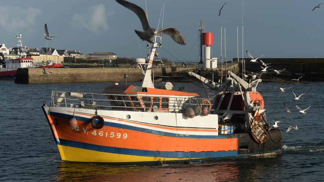 """L'Europe s'engage pour """"sauver"""" les stocks de poissons en Méditerranée"""