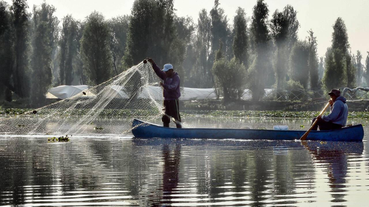 A Mexico, les pêcheurs veulent sauver le jardin aztèque de Xochimilco