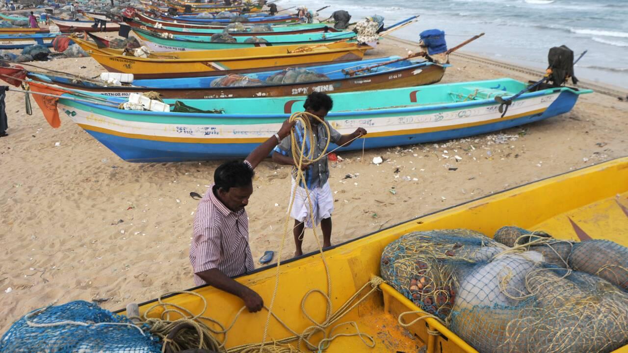 Respecter l'accord de Paris permettrait d'épargner la pêche mondiale