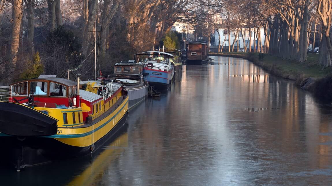Canal du Midi: 3,3 millions d'euros pour remplacer les platanes malades