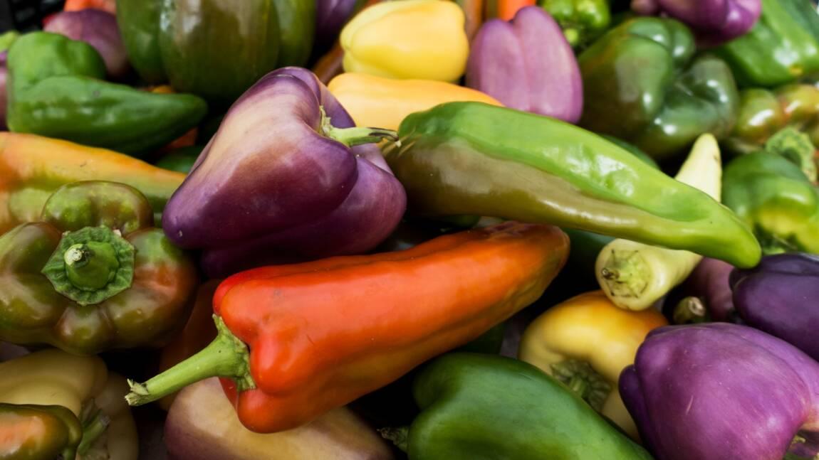 Les Américains jettent 150.000 tonnes de nourriture par jour (étude)