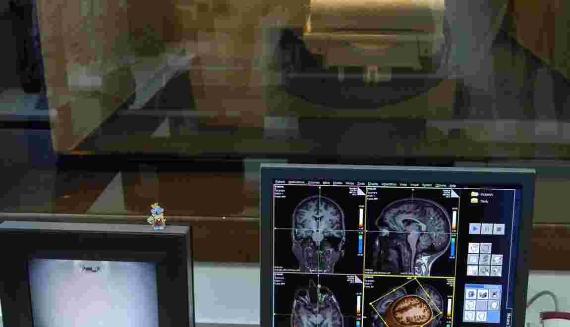 Cerveau: une semaine consacrée aux progrès sur la recherche