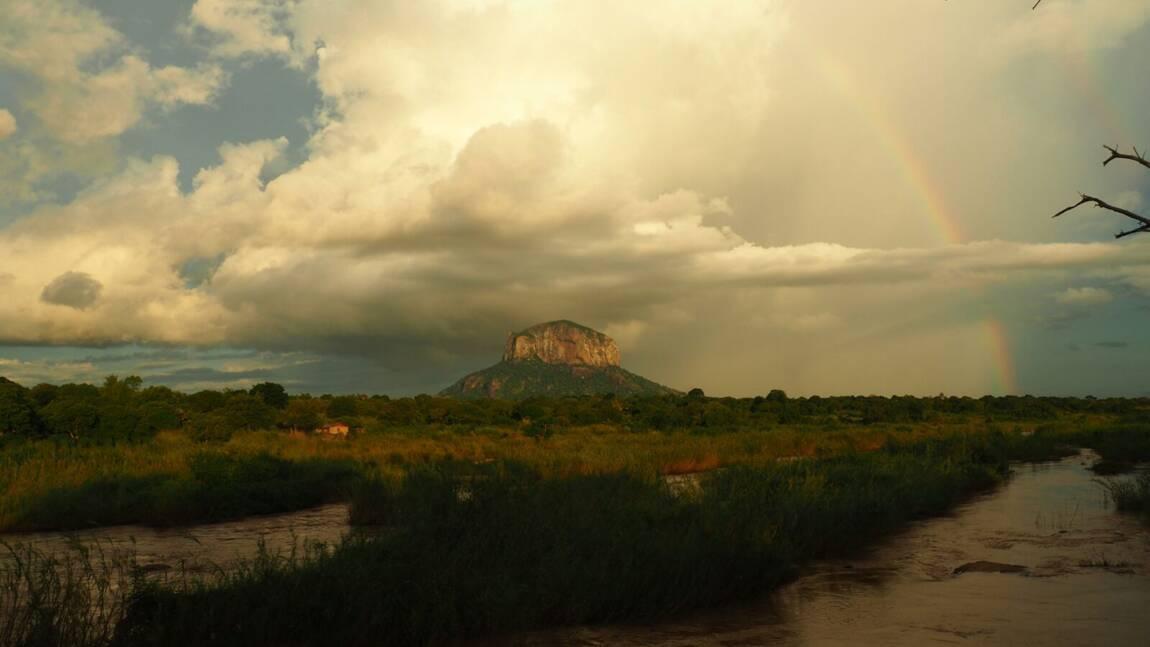 Au Mozambique, l'agriculture de conservation au secours de la forêt