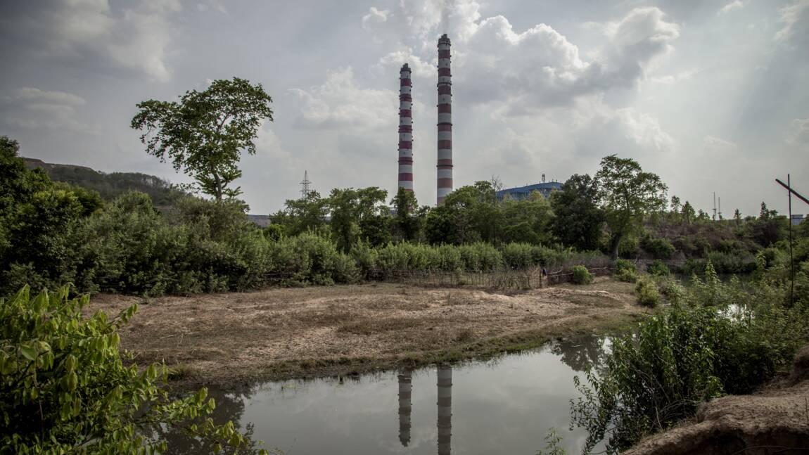 Au moins 200 personnes tuées en 2016 pour avoir voulu protéger l'environnement