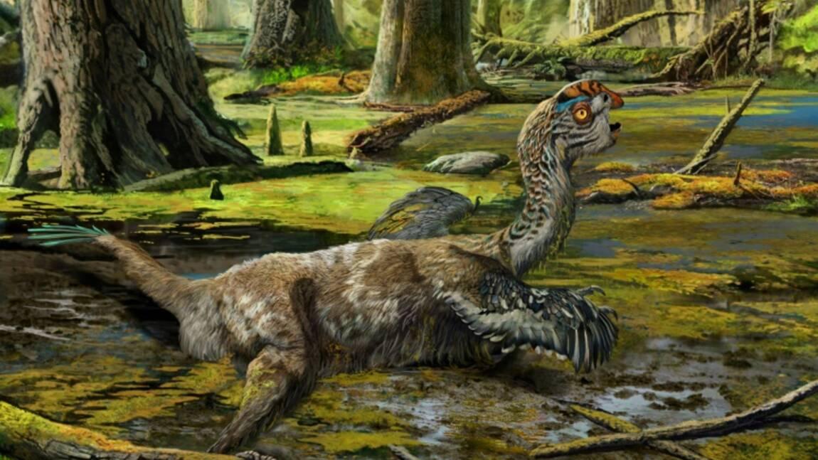 Paléontologie: Un dinosaure de plus au catalogue