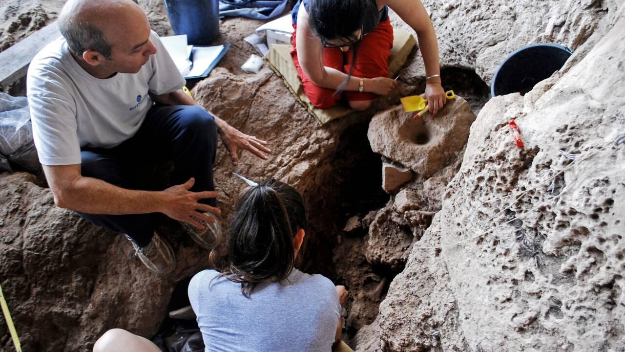 Une brasserie présentée comme la plus ancienne du monde découverte en Israël