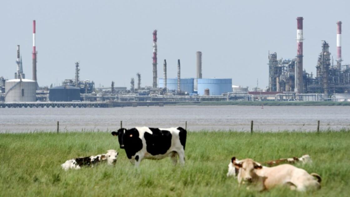 """Carbone: première baisse """"significative"""" du surplus de quotas de CO2 sur le marché européen"""