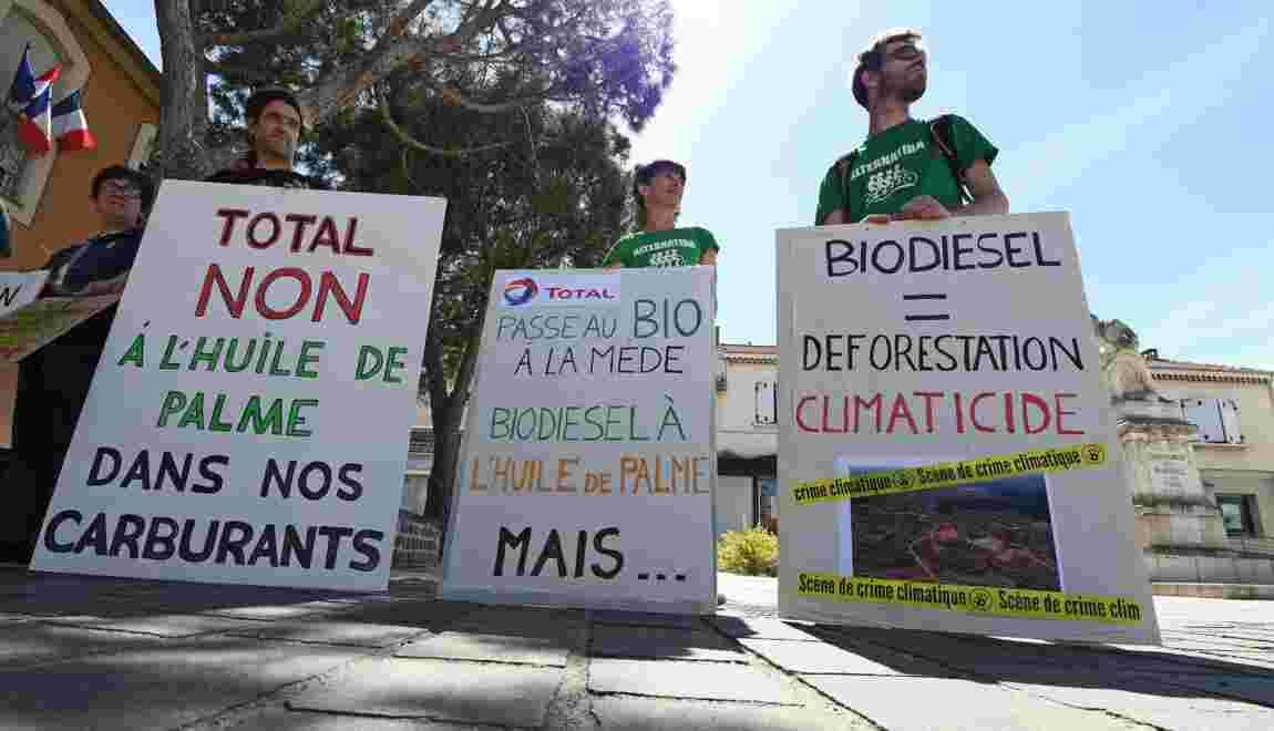 Bio-raffinerie de La Mède: Total s'engage à limiter l'huile de palme