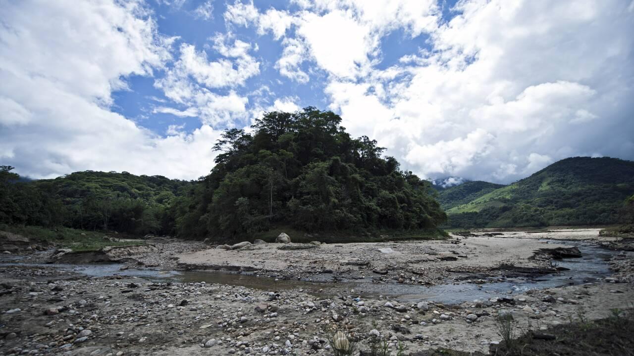 Le nord-est du Brésil victime d'une sécheresse historique