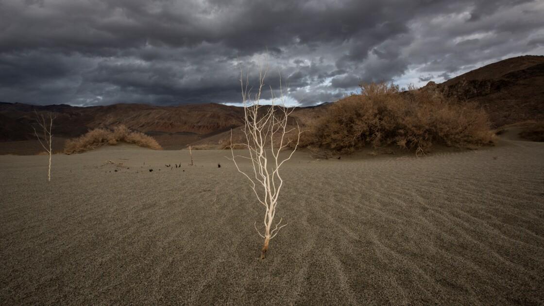 En 2 siècles, l'humanité va annuler 3 millions d'années de refroidissement du climat