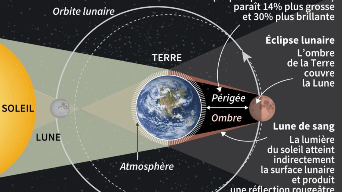 """Une """"super Lune bleue de sang"""" visible en Amérique du Nord mardi soir"""