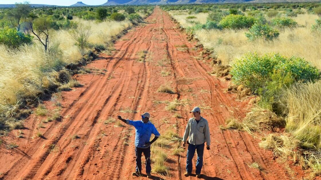 Pourquoi l'Australie va construire une immense clôture contre les chats