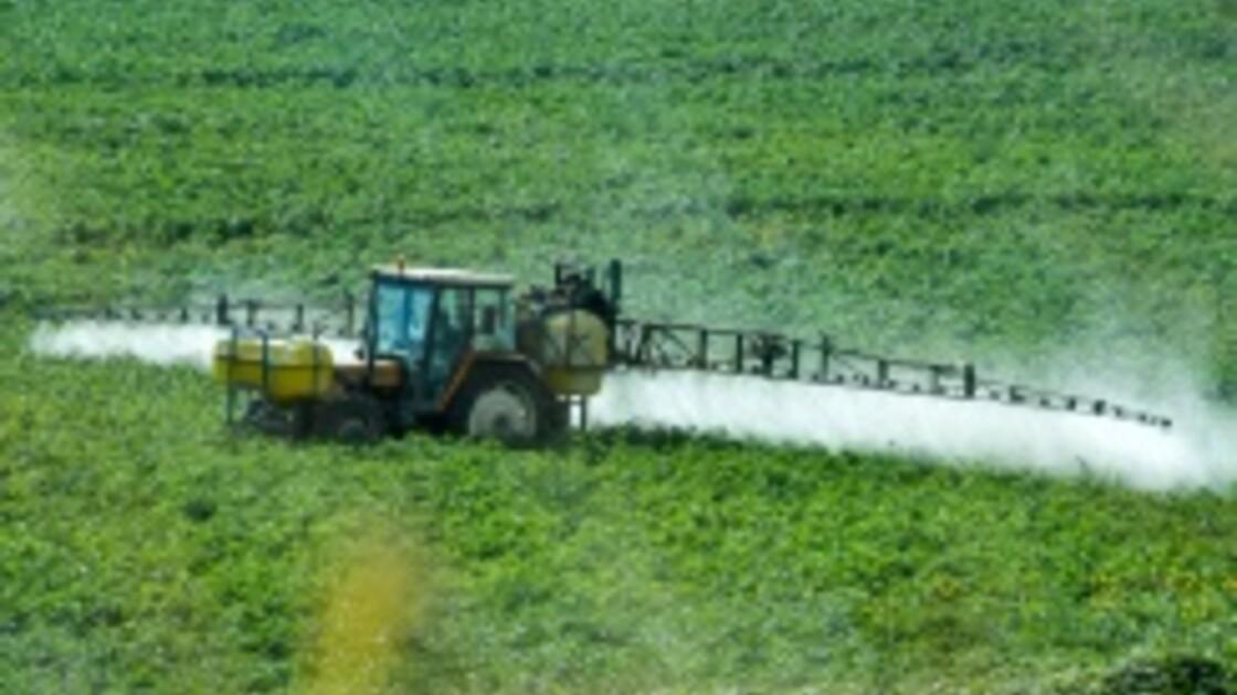Réduire les pesticides: l'agriculture conventionnelle s'y met à pas comptés