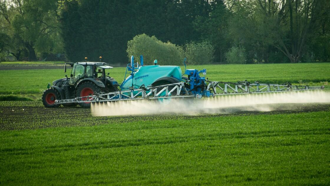 Parkinson : les pesticides menaceraient aussi les riverains
