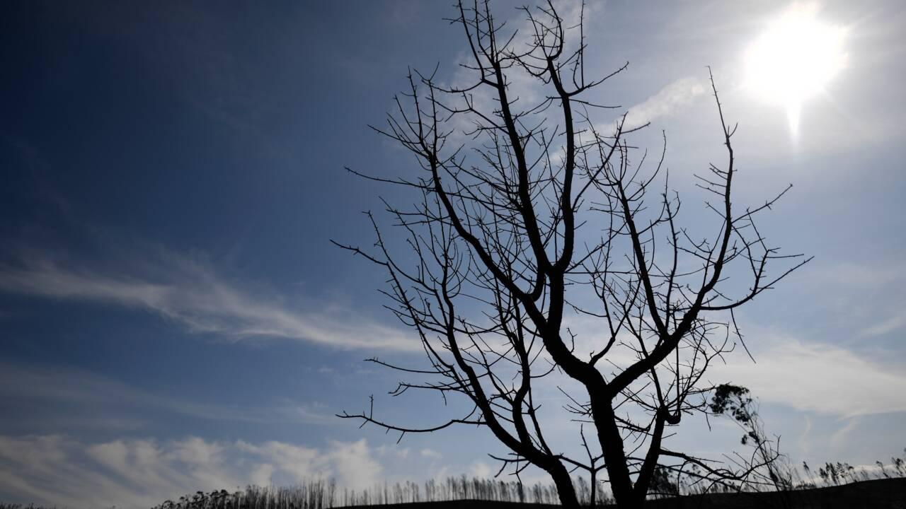 Face à la sécheresse, les Portugais appelés à économiser l'eau