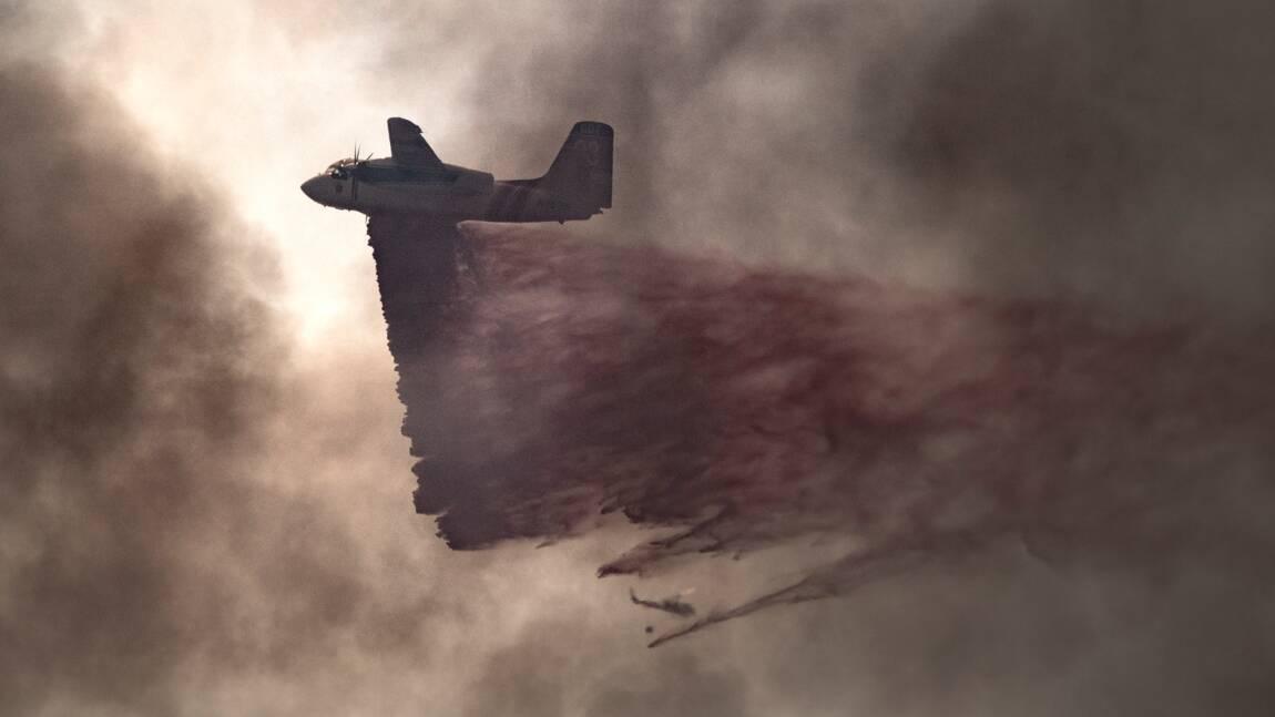 De gigantesques feux de forêt embrasent l'ouest des Etats-Unis et du Canada