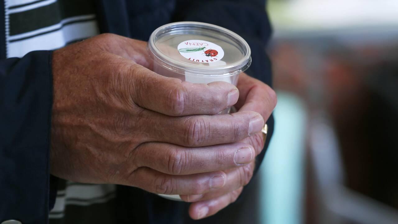 Les jardiniers s'arrachent les coccinelles contre les pesticides
