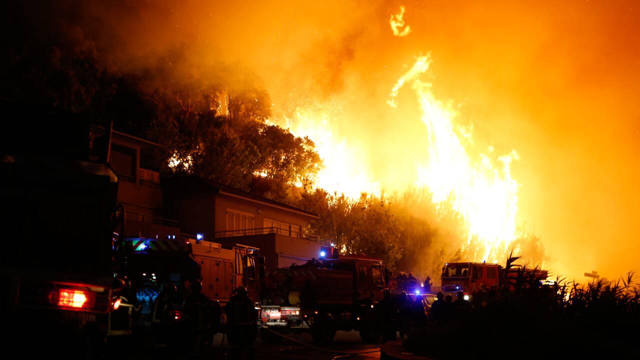 Réchauffement, urbanisme : en Méditerranée, la forêt n'a pas fini de brûler