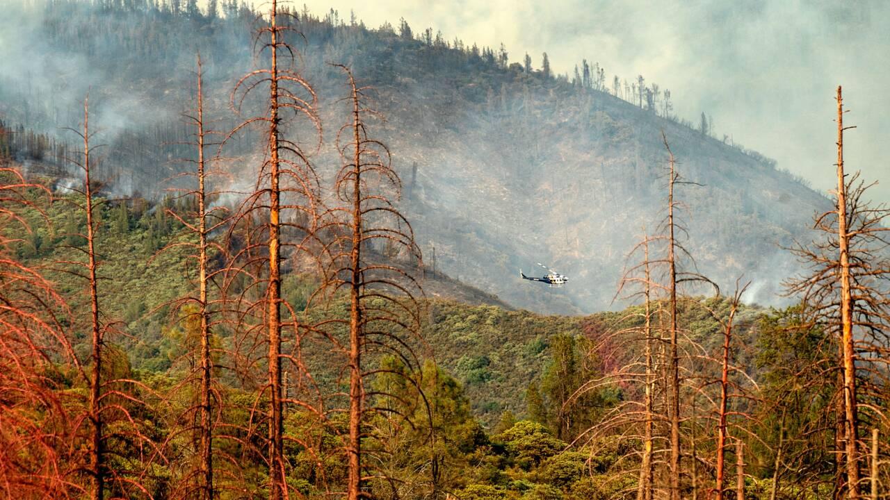 Le parc américain de Yosemite partiellement fermé à cause de l'incendie