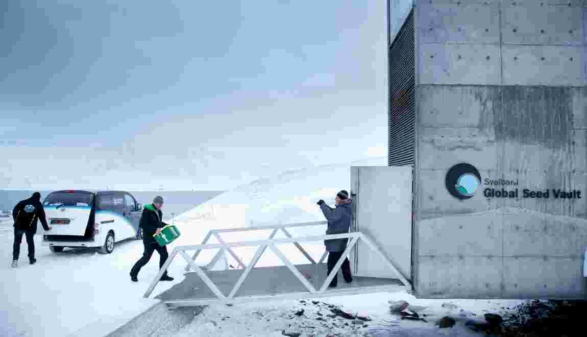 """Norvège : l'""""Arche de Noé végétale"""" franchit le million de variétés"""
