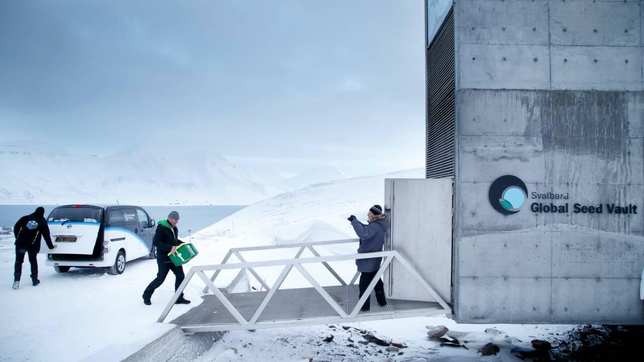 """La Norvège veut renforcer la protection de """"l'Arche de Noé végétale"""""""