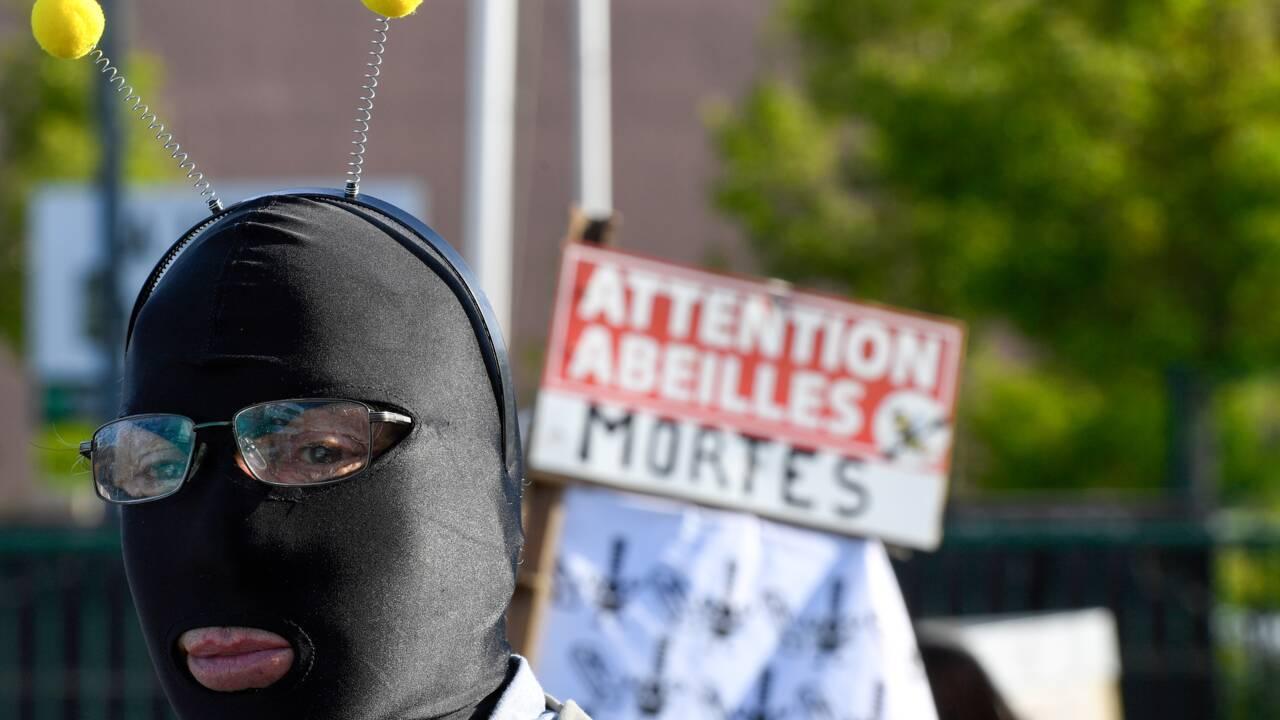 Un convoi de ruches mortes termine son parcours à Rennes