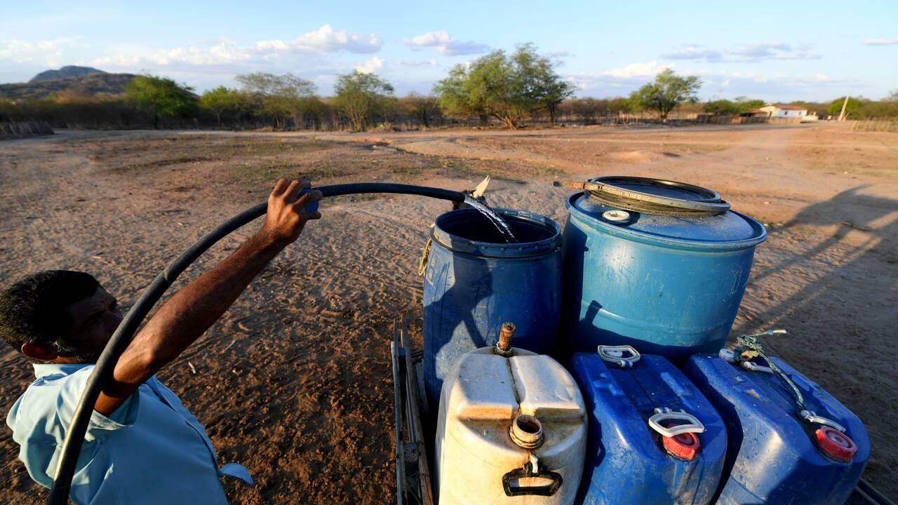 Le nord-est brésilien en proie à la pire sécheresse depuis un siècle