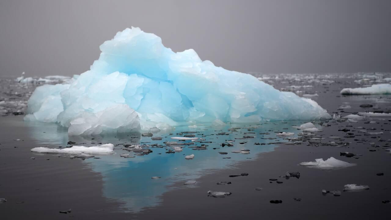 Depuis Brest ils traquent les icebergs pour les coureurs au large
