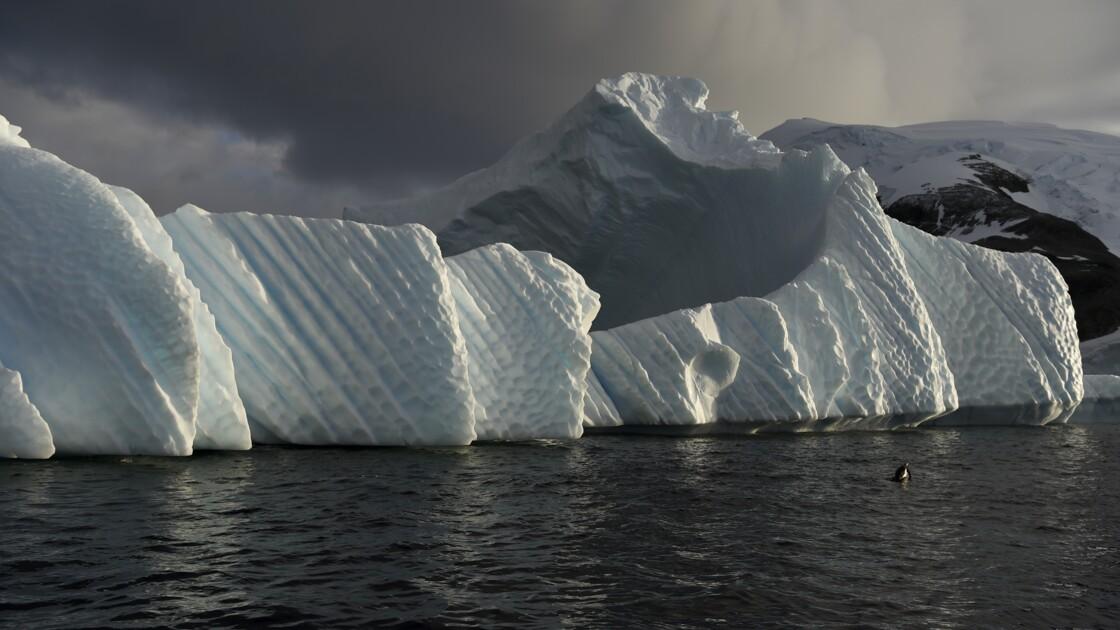 Climat: la banquise antarctique sur la voie du déclin?