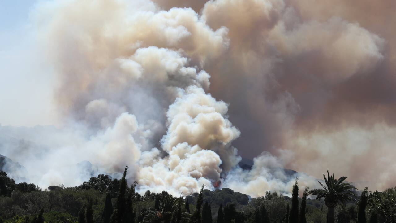"""Incendies dans le Var: """"catastrophe écologique"""" selon un élu, déficit de débroussaillement, accuse un autre"""