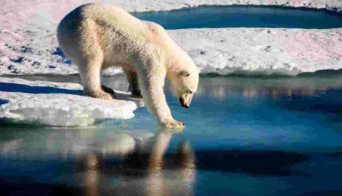 Climat: l'ONU alerte sur les phénomènes extrêmes en 2017