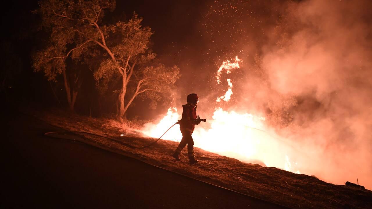 Incendies au Portugal et en Espagne : le bilan s'alourdit à 45 morts