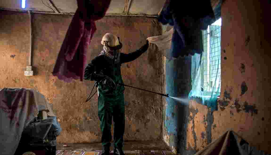 Au Ghana, les moustiques résistent aux insecticides, et compliquent la lutte contre le paludisme