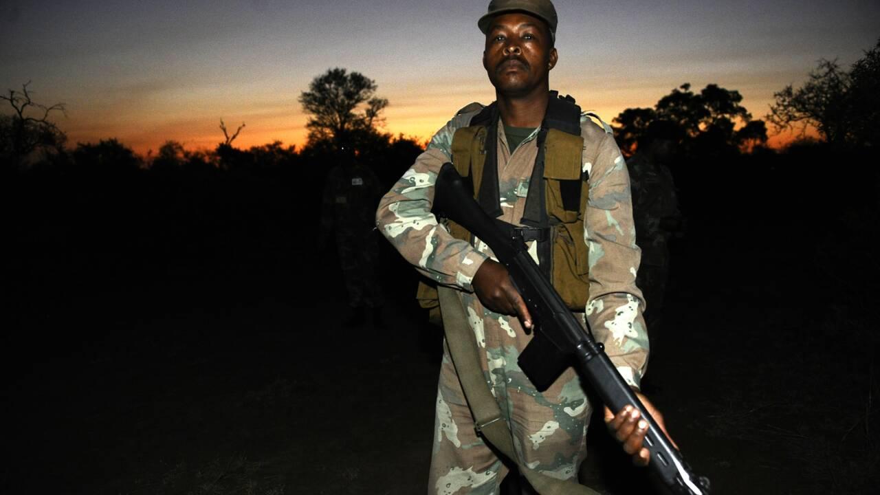 Braconnage et tourisme : le Mozambique veut rattraper son retard