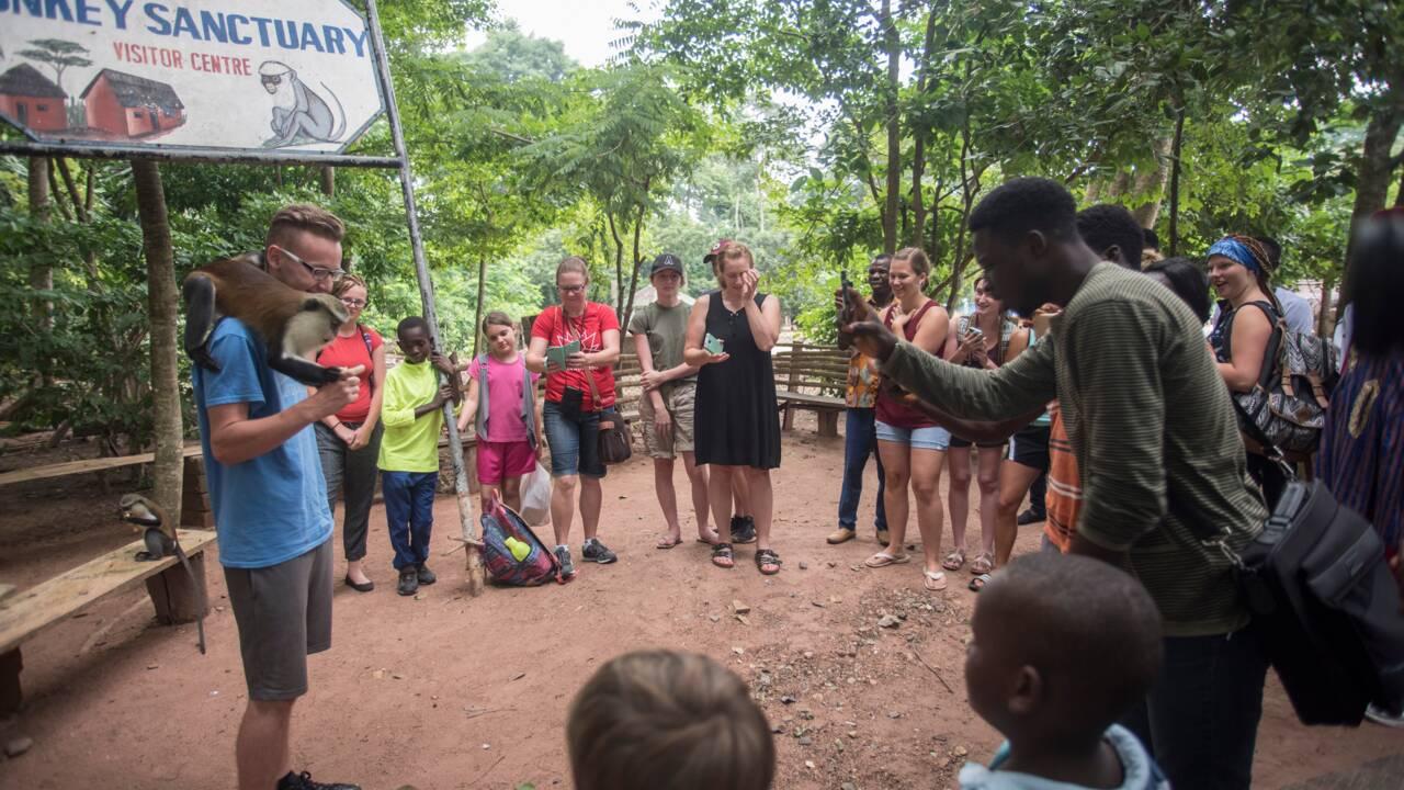 Au Ghana, le business des singes fait le bonheur de villageois