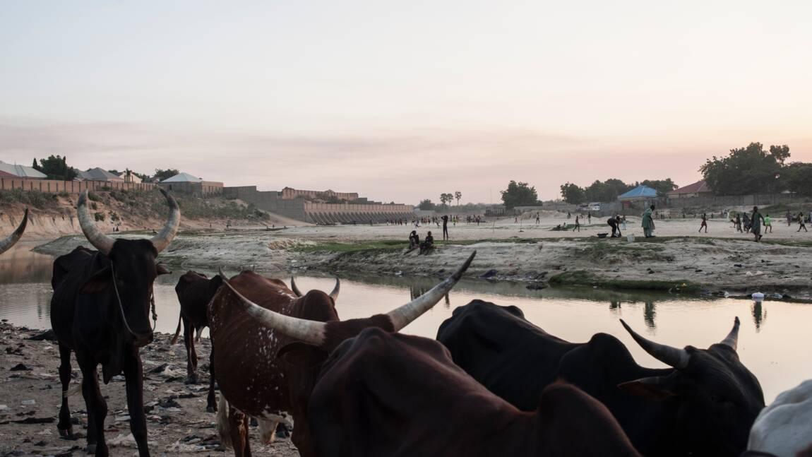 Nigeria: ouverture d'une conférence pour le lac Tchad